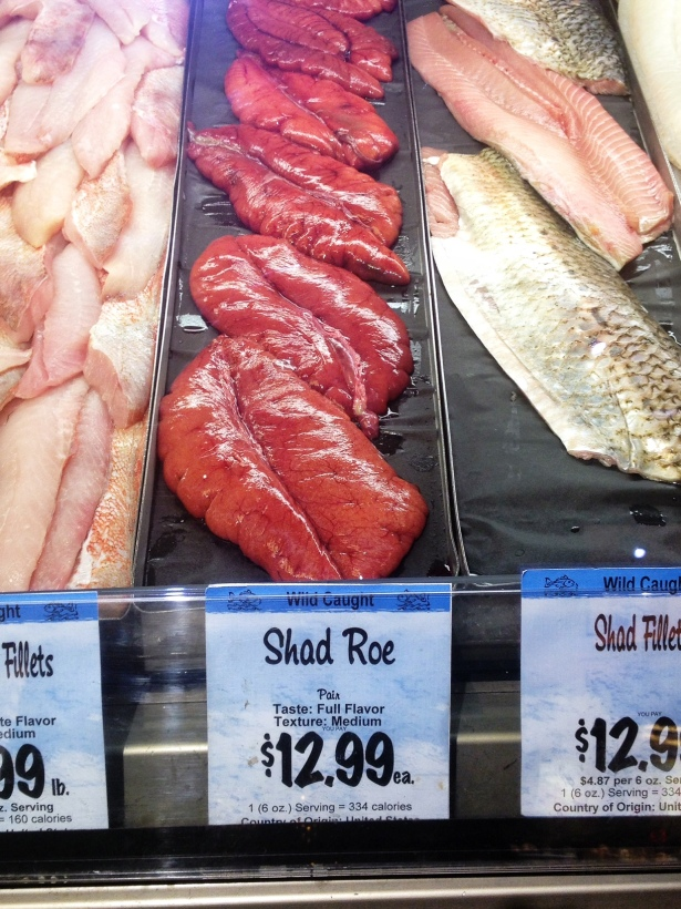 This is what shad roe looks like