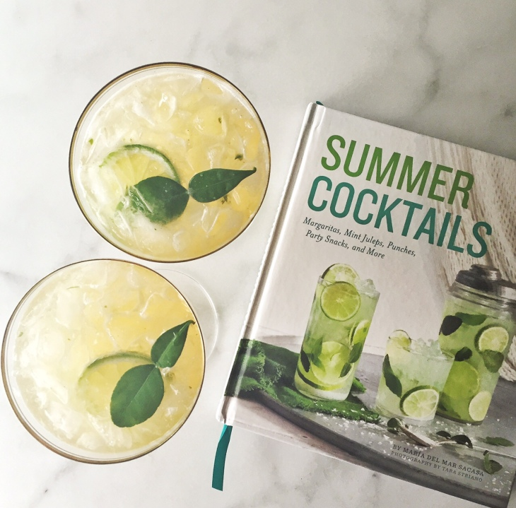 Salty Lime Soda from Summer Cocktails